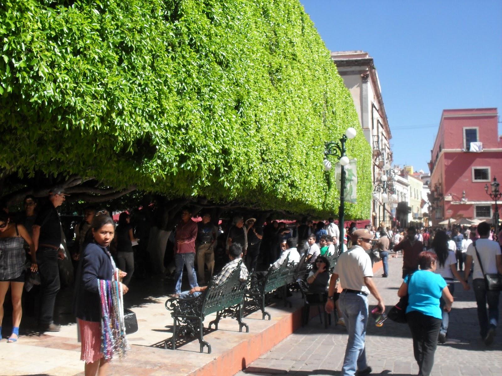Mi diario urbano festival internacional cervantino en for 7 jardines guanajuato