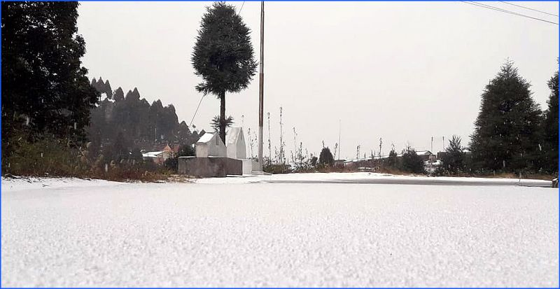 blanketed of snow at Dhotrey, near Darjeeling