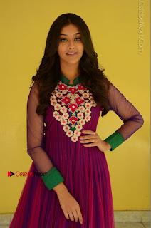 Actress Pooja Jhaveri Latest Stills in Purple Salwar Kameezt at Dwaraka Success Meet  0067.JPG