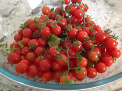 cherry tomatoes and eggplant