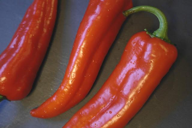 Köttfärsfyllda paprikor med paprikaost