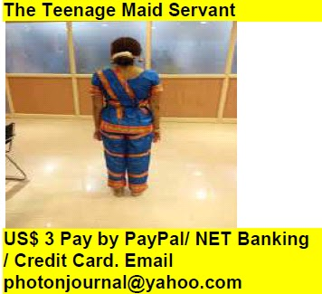 The Teenage Maid Servant