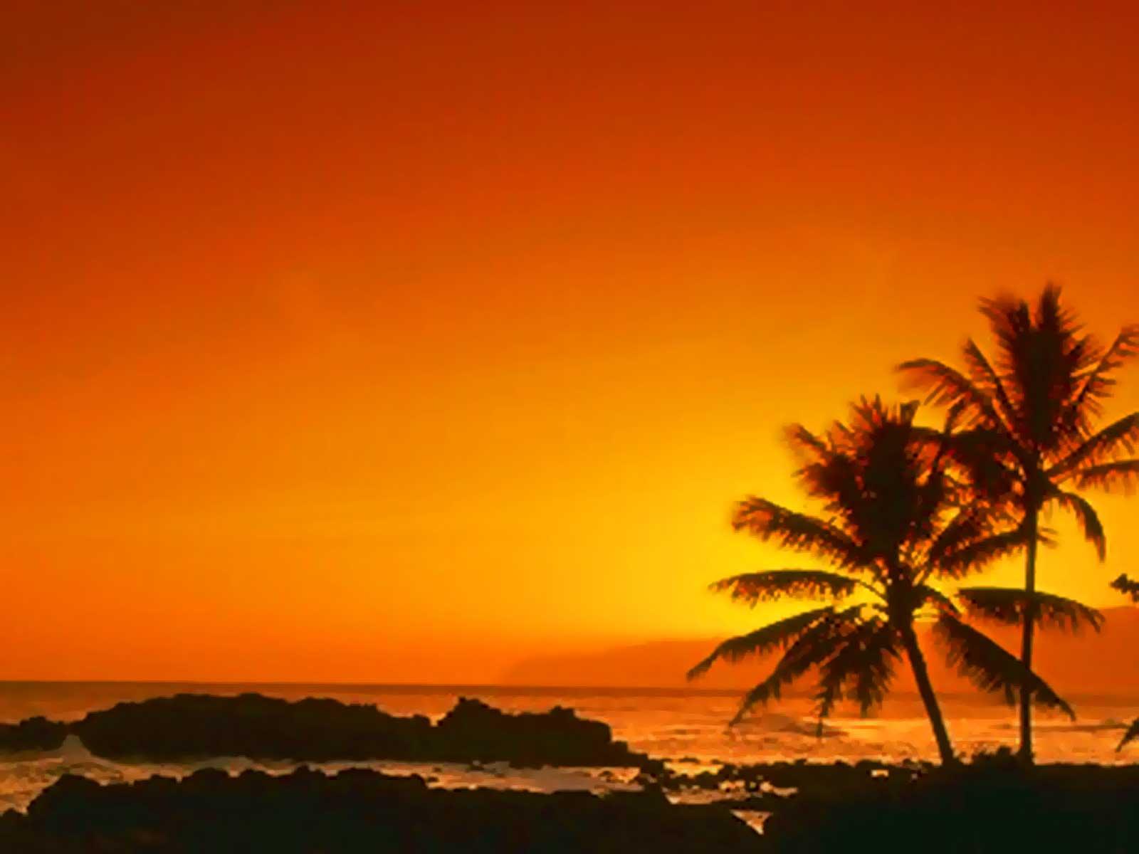 Amazing Sunsets - Wonderful - photo#8