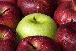 photo d'une pomme verte parmi des pommes rouges