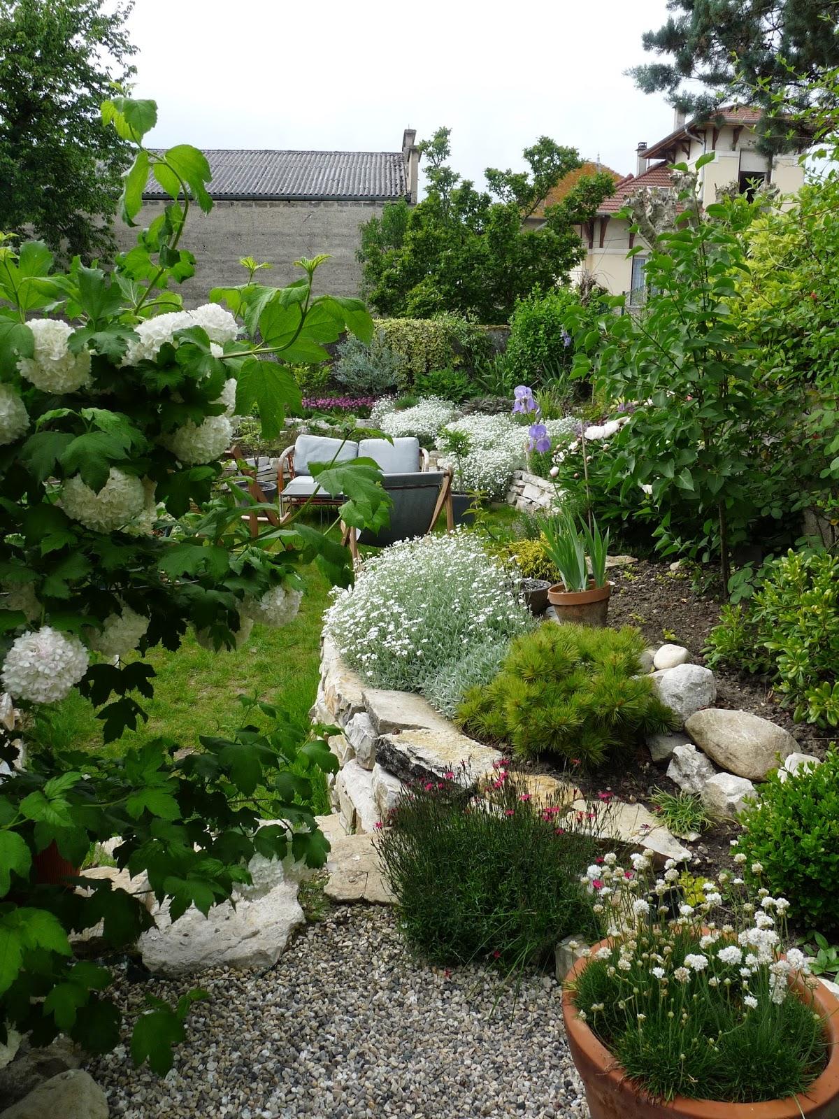 Rue rivoirette jardin mon massif fleuri for Photo massif jardin