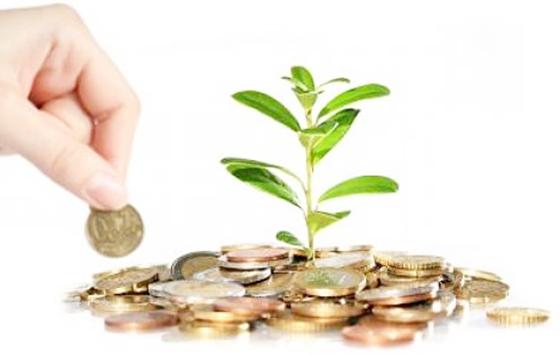 Tips berinvestasi yang efisien dan tepat bagi pemula