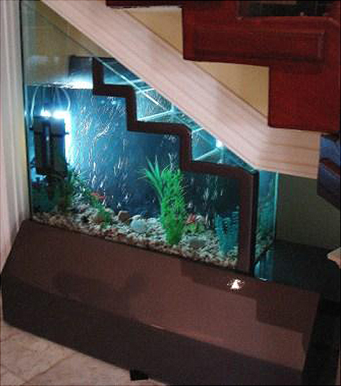 If it 39 s hip it 39 s here archives no room for an aquarium for Aquarium house decoration
