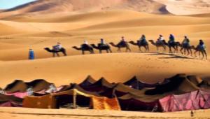 من هو حاتم الطائي قوافل صحراء العرب الجاهليه قريش