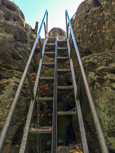 steps to the lookout perch at Castle Mound