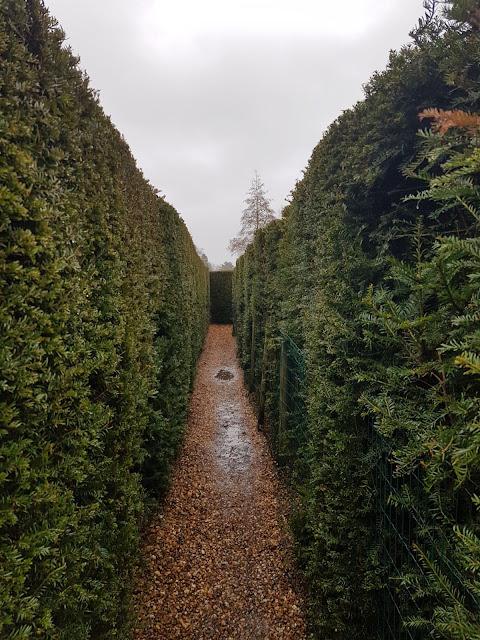 Yew Maze Hever Castle Kent UK Anne Boleyn