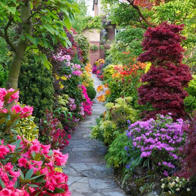 Pathway+through+the+spring+middle+garden