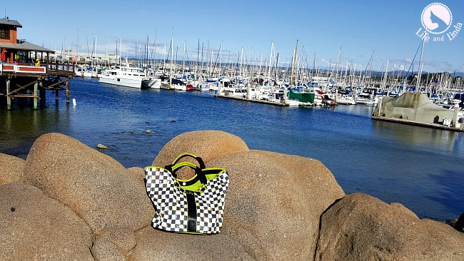 The Traveling Tote - Miss Lola at Carmel