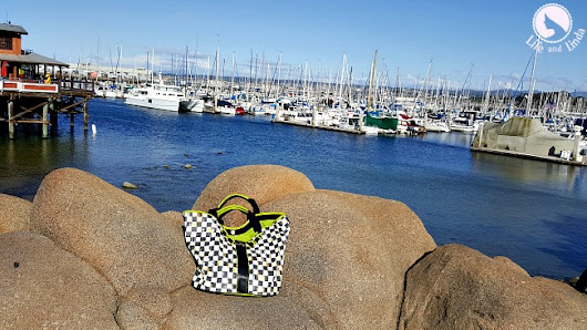 Monterey & The Traveling Tote Plus Giveaway