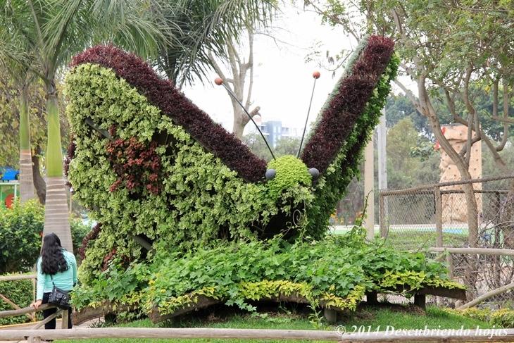 Descubriendo hojas jard n bot nico en el parque de las for Jardin botanico costo entrada