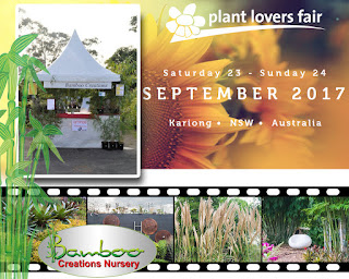 Bamboo Creations Victoria attending the Kariong NSW plant lovers fair