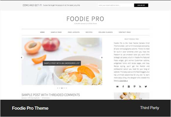 Foodie Pro Theme Award Winning Pro Themes for Wordpress Blog : Award Winning Blog