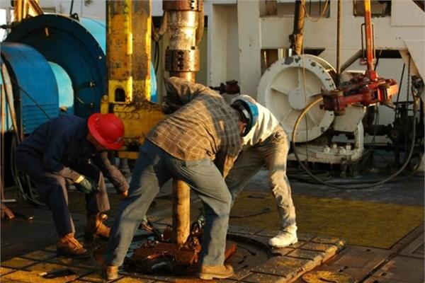 petrol platformu operatörü ne kadar kazanıyor