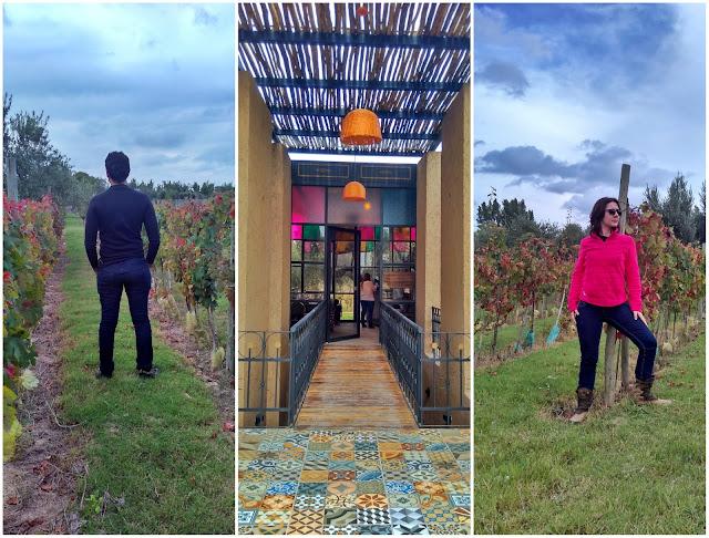 Parreiras e o moderno na vinícola El Enemigo, em Mendoza, Argentina.