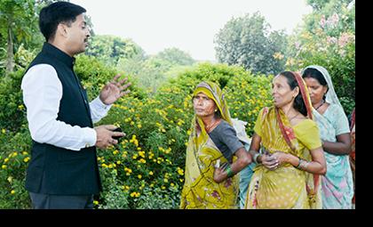 ORGANIC INDIA: Organic India: Brief About Organic India Pvt