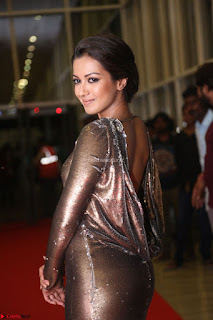 Actress Catherine Tresa in Golden Skin Tight Backless Gown at Gautam Nanda music launchi ~ Exclusive Celebrities Galleries 035.JPG