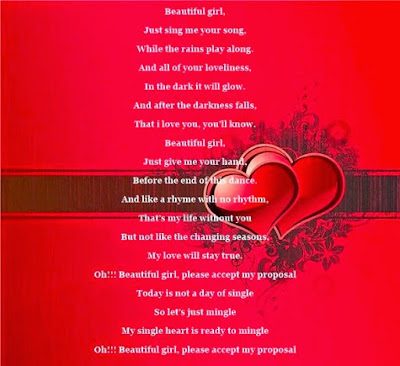 Romantic Valentines Day 2016 Poems for Him