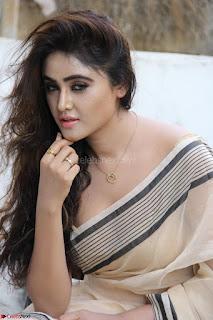 Sony Charishta in Brown saree Cute Beauty   IMG 3604 1600x1067.JPG