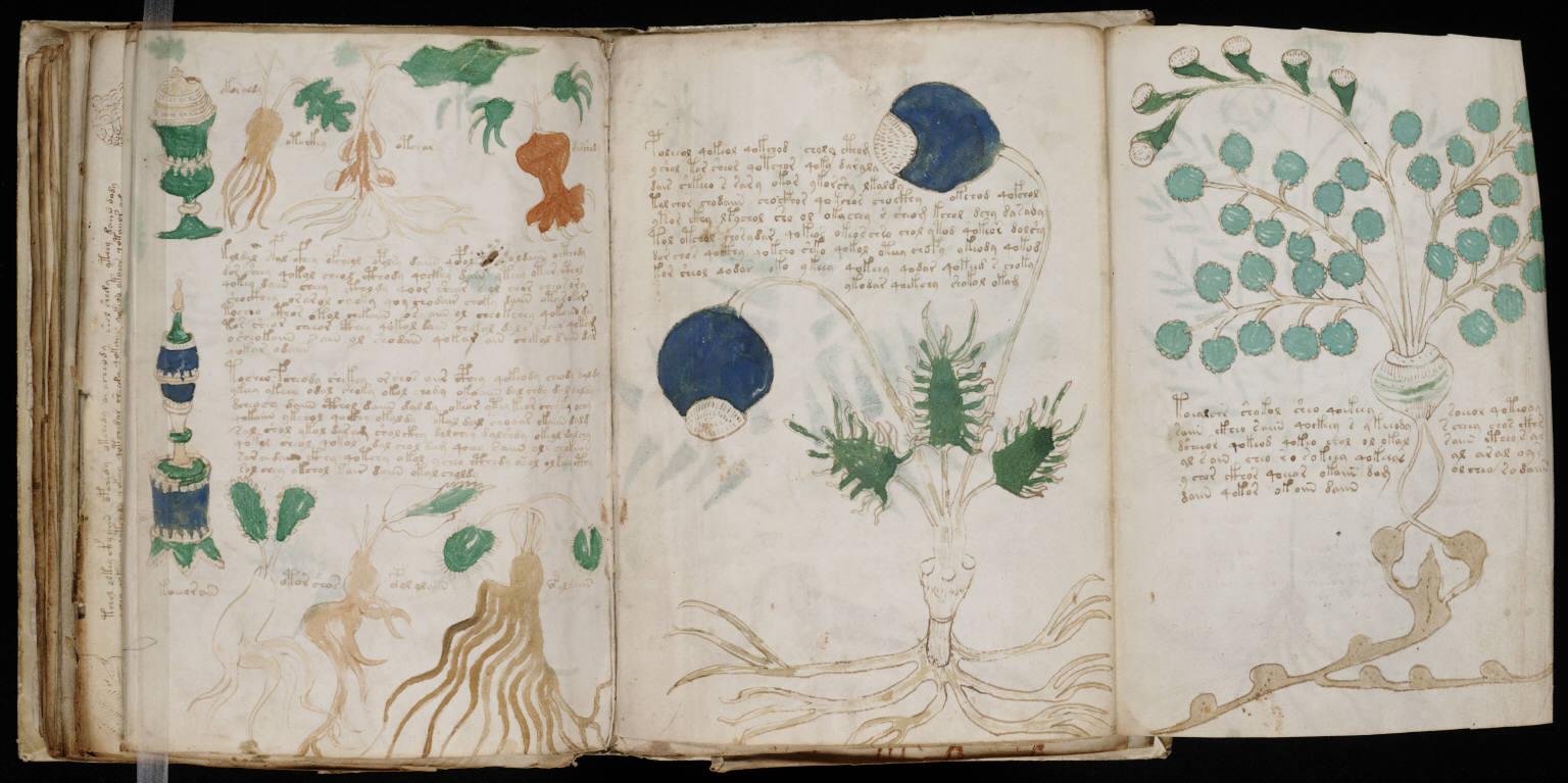 manuscrito162