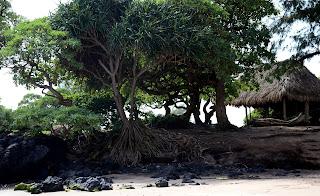 Kōkī Beach - Maui, Hawaii - Hawaï