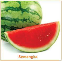 Semangka - Pepo - Karakteristik Bahan Pangan Hasil Samping Buah