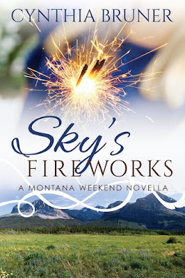 Sky's Fireworks by Cynthia Bruner book cover