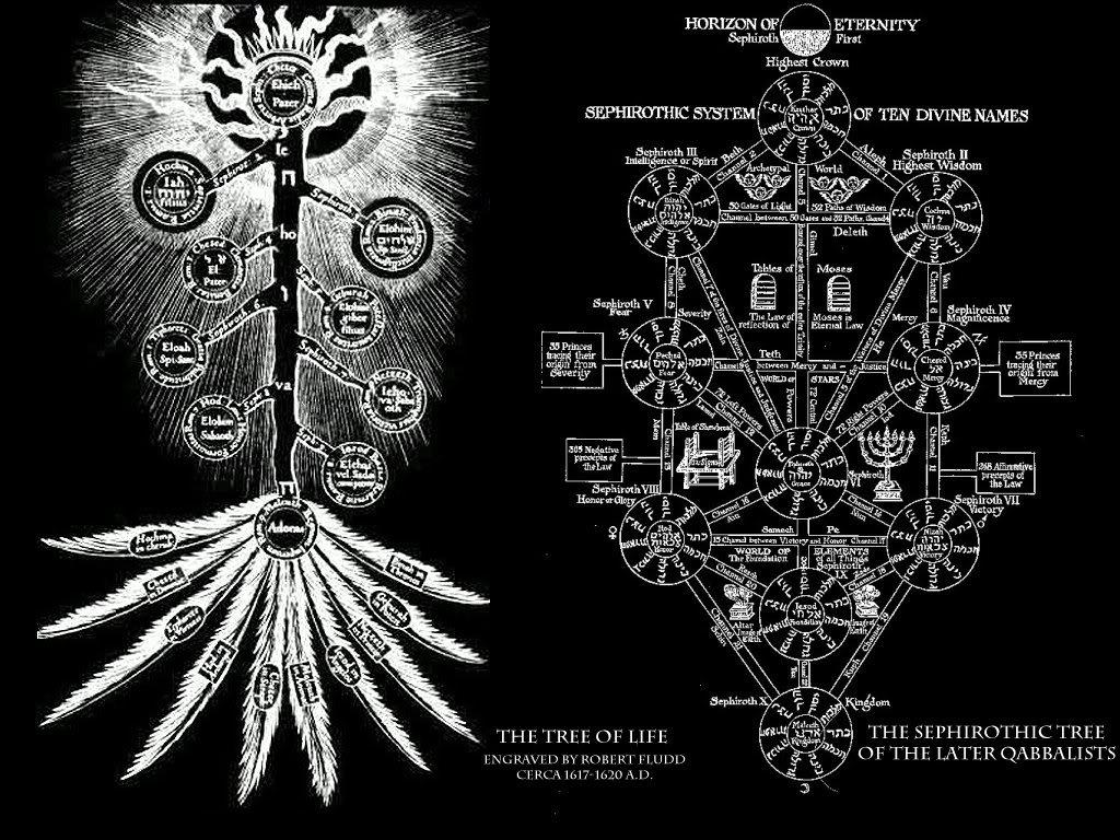 Símbolos Mitos Y Arquetipos El Símbolo Del árbol