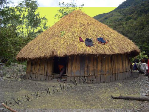 Rumah Adat Honai Kartun