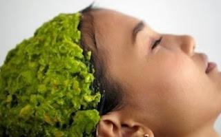 Cara Sehat Merawat Rambut Menggunakan Seledri