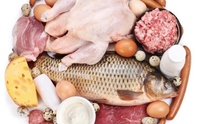 ما هو الفرق بين البروتين الحيوانى والبروتين النباتى ؟