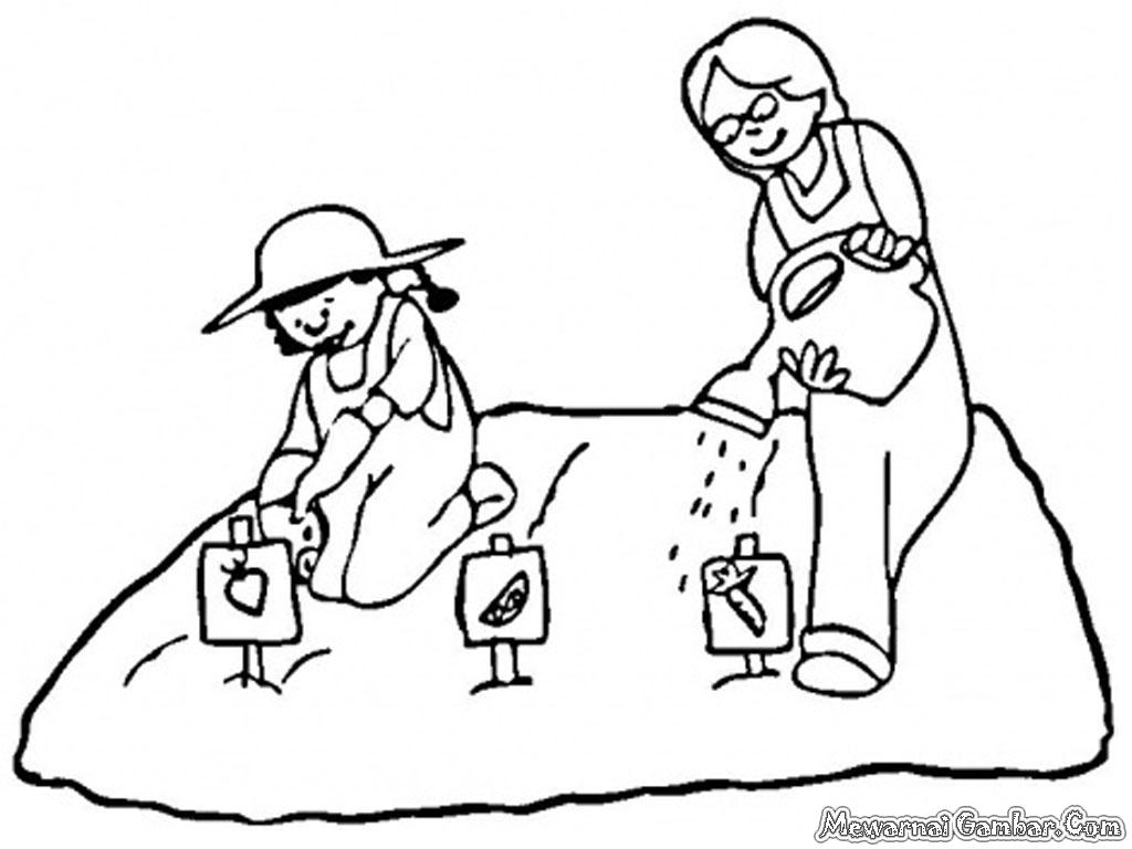 Gambar Kartun Menanam Jagung Animo Kartun