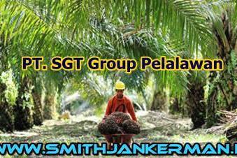 Lowongan PT. SGT Sawit Riau Pelalawan April 2018