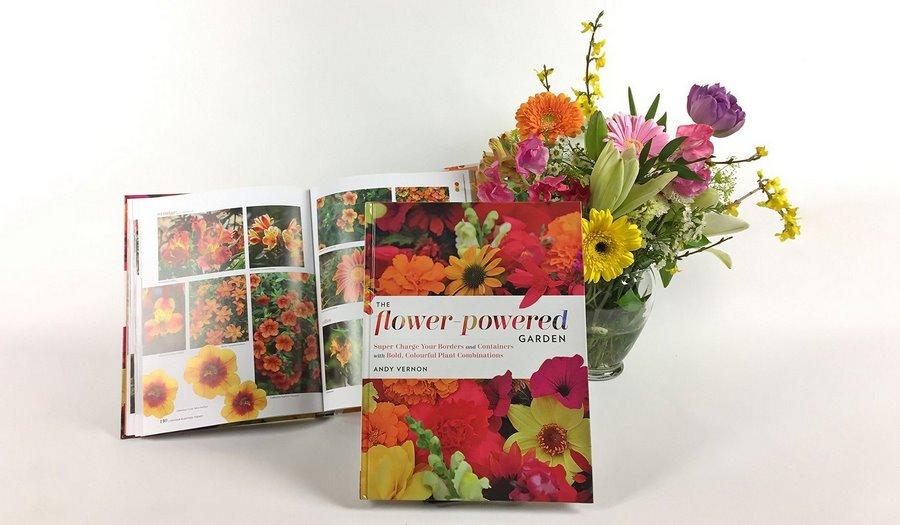 cómo crear combinaciones de plantas de flor de diferentes colores