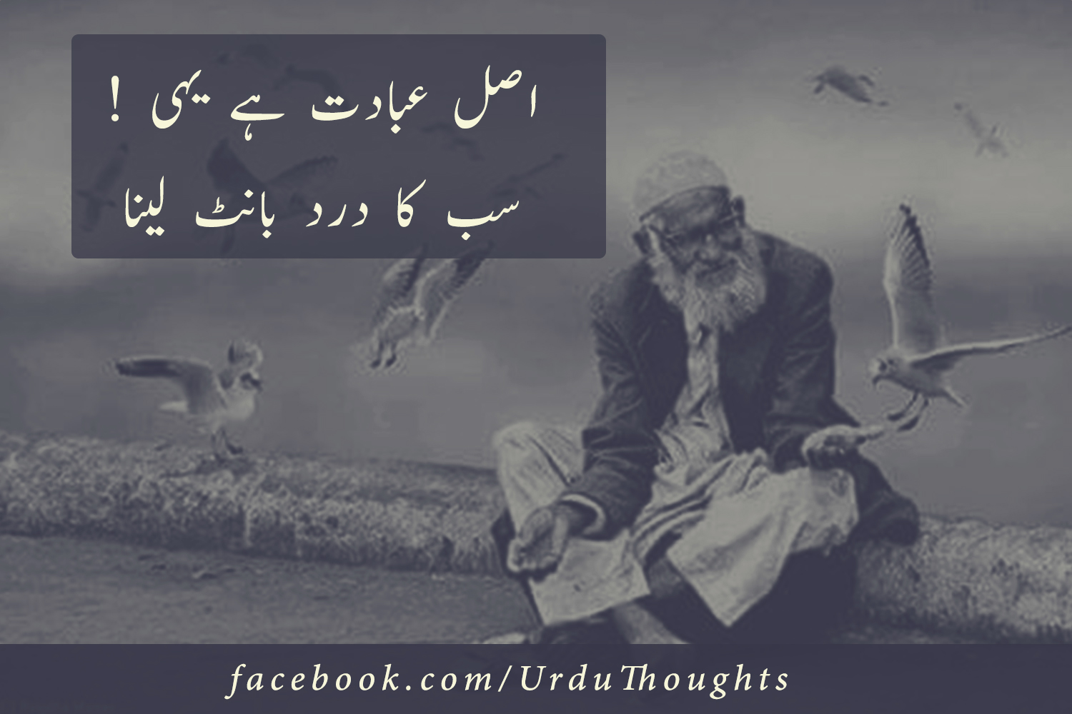 very nice islamic poetry in urdu with images 3 photos urdu thoughts