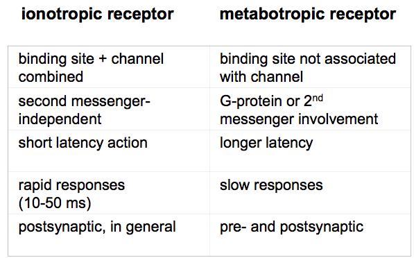 The Plastic Brain: Ionotropic versus Metabotropic Receptors