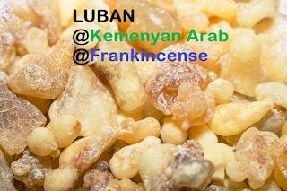 LUBAN @ KEMENYAN ARAB YANG TELAH DIBERSIHKAN/DIPROSES