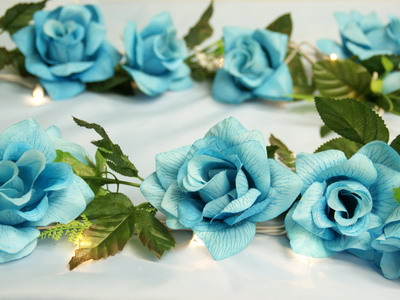 Turquoise Roses Rose Wallpapers