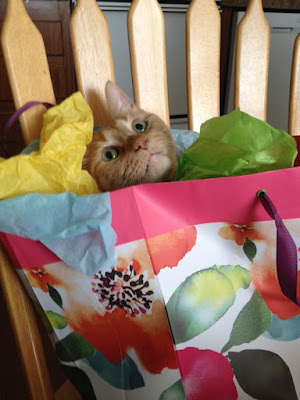Who needs gifts when you have the bag?!