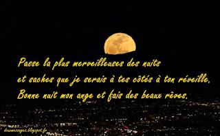 Passe la plus merveilleuses des nuits et saches que je serais à tes côtés à ton réveille. Bonne nuit mon ange et fais des beaux rêves.