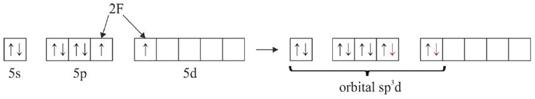 hibridisasi XeF2