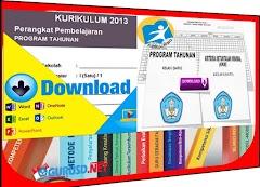 Prota dan Promes Kelas 1 SD Kurikulum 2013 Revisi Tahun 2016