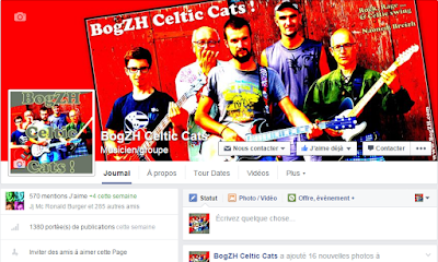 Page Facebook du groupe breton de rock celtique punk folk BogZH Celtic Cats !
