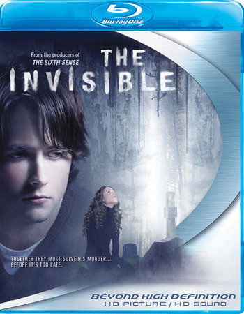The Invisible (2007) Dual Audio 300MB