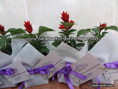 çiçek nikah fidanı İzmir Elif Başar - 5