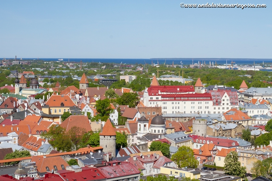 10 fascinating facts about Estonia_10 things you did not know about Estonia_Under the Andalusian Sun_travel blog_2
