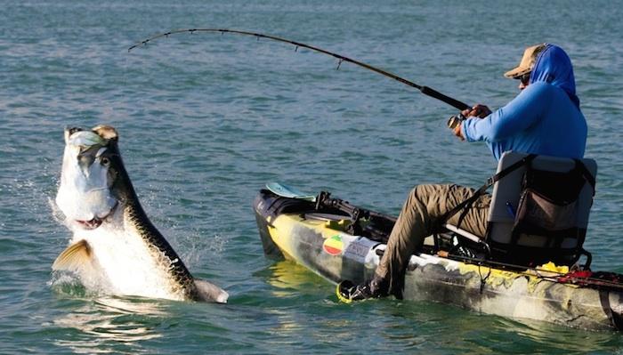 Best Fishing Rod Brands